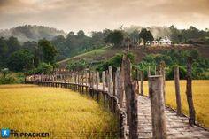 Zutongpae Bridg Thailand  Travel amazing Thailand wonderful view