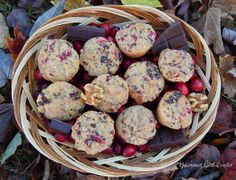 Gourmet Girl Cooks: Chocolate Chip Cranberry Mini-Muffins -- Low Carb & Wheat Free