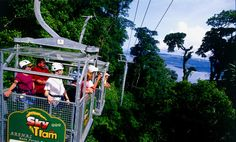 Arenal Rainforest Activities, Central America, Costa Rica, Fair Grounds, Sky, Adventure, Travel, Heaven, Viajes