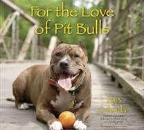 Pit Bull best dog ever