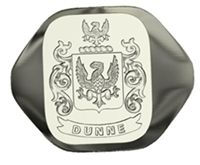 High quality custom family crest rings ensure the popularity of a particular family name. Unique Celtic cross jewelry and heraldic customizable family crest rings can be issued for both men and women. This type of jewelry can be availed for almost every crest and coat of arms. The elegance of each piece of these urbane family crest rings can be judged by their visibility and stylish looks.