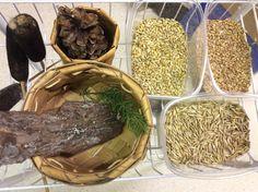 Opiskelijat Osaralta ja muistojen siemenet Stuffed Mushrooms, Vegetables, Food, Stuff Mushrooms, Essen, Vegetable Recipes, Meals, Yemek, Veggies