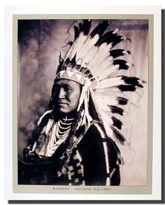 The Shoshone Indians are one of the most important historic Native American Indian tribes. Today however most of the Shoshone Native American Indians are settled in the Snake River region of Idaho. In reality the name Shoshone actually translates as the Valley People. The Shoshone tribe was basically divided into groups. The Shoshone group was not a very large one and the total number of Shoshone Indians scattered around America did not cross the eight thousand mark.