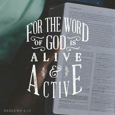 Daily reading of God's word can change you from the inside out. #dailyinspiration #bibleverse www.stevewiersum.com