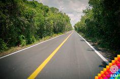 Viajar por Yucatán siempre es un placer, más con sus bellos verdes paisajes.