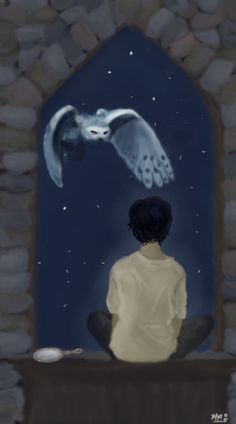 Harry and Hedwig by cacophonously