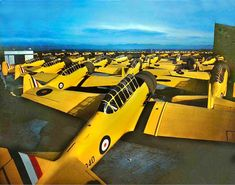 This set contains aircraft used by the Royal Air Force of Great Britain including Fleet Air Arm and to a lesser extent the South African Air. Ww2 Aircraft, Military Aircraft, South African Air Force, History Online, Battle Of Britain, Nose Art, Royal Air Force, World War Two, Wwii