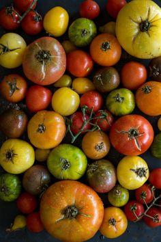 Waterblommetjie bredie -The Truffle Journal Vegetarian, Vegetables, Food, Essen, Vegetable Recipes, Meals, Yemek, Veggies, Eten