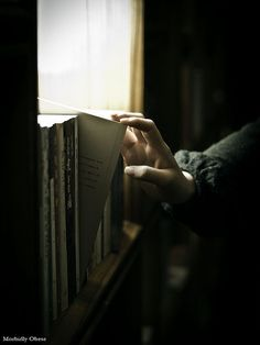 If you only read the books that everyone else is reading, you can only think what everyone else is thinking. I Love Books, Good Books, Books To Read, My Books, The Book Thief, My Sun And Stars, Lectures, Love Reading, Jane Austen