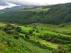 county wicklow. isn't it amazing?