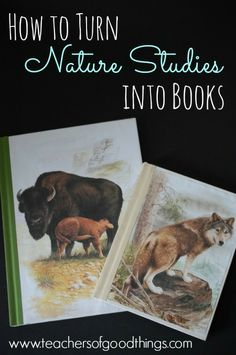 How to Turn Nature Studies into Books - Great for middle/highschoolers. Can see this working as a science notebook as well.