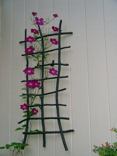 simple branch trellis
