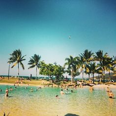 Airlie Beach for New Years didn't quite beat Berlin but it was right up there! #Airlie #newyears #nye #newyearseve #lagoon #airlielagoon #northqld #northqueensland #whitsundays #greatbarrierreef #tropics #bluesky #palmtrees #myhappyplace #wanderer #wanderlust #travel #traveler #qld #queensland #australia #sunnyday #sunshine by kc_l33 http://ift.tt/1UokkV2