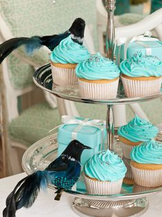 Tiffany Blue cupcakes with silver sprinkles