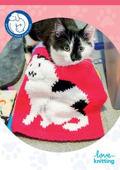 LoveKnitting have partnered with Battersea Dogs & Cats Home to help rehome lost animals one stitch at a time! When you buy this pattern, 100% of the pattern proceeds goes directly to the animals.Ray, designed by Vikki Bird, is based on a blind cat from Battersea who was adopted when he was only 12 months old. He had been dumped outside a vet's in London and brought into the Battersea Cats & Dogs Home. He has developed into a beautiful boy and he likes to spend his days either roam...