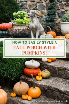 How to easily style a Fall porch with pumpkins with Celebrating Everyday Life