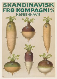 Old danish poster for a seed company