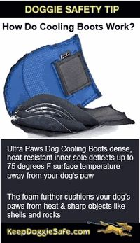 Cooling Vests Boots Cooling Vest Cool Boots Cool Stuff