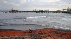 Migliaia di gamberetti morti si sono spiaggiati sulle coste cilene, a Coronel Town, a 540 km da Santiago. I residenti sostengono che la morìa sia dovuta all'inquinamento provocato dall'acqua gettata in mare, usata per raffreddare due centrali termoelettriche che si affacciano sulla spiaggia