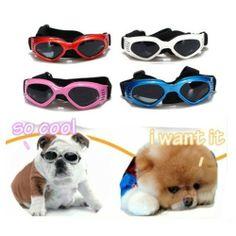 Cool fashion S pet dog sunglasses UV Goggles glasses weatherproof eye protection by FamilyMall, http://www.amazon.co.uk/dp/B00DLYY1C0/ref=cm_sw_r_pi_dp_Ttk8sb106TW7A