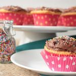 Back to the Basics: Yellow Cupcakes with Chocolate Frosting