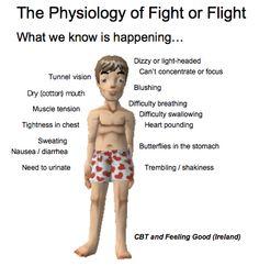 The physiology of fight or flight. #hawaiirehab www.hawaiiislandrecovery.com