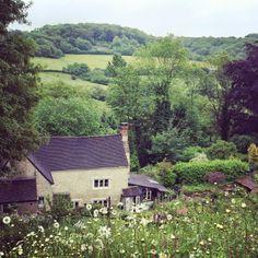 Slad Valley Laurie Lee Centenary #Gloucestershire #Cotswolds Bradshaw  Sons
