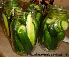 Delicious Homemade Pickles! (Dill Pickles for Jared)