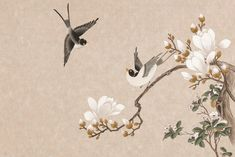 Japan Painting, Silk Painting, Texture Painting, Plant Sketches, Art Drawings Sketches, Chinese New Year Wallpaper, Bird Coloring Pages, Esoteric Art, Chinoiserie Wallpaper