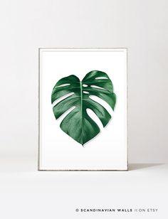 Feuille de Monstera, feuille de palmier imprimer, monstera deliciosa, feuille de palmier, art mural tropical, botanique feuille d'impression, tropical, botanique, monstera