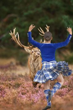 Facing the deer... Scotland