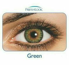 a04946e105d5 Hazel contacts Freshlook brand new never used factory sealed. 1 pair in box.  Only for cosmetic use. Life span of 1 year. Expires on Makeup