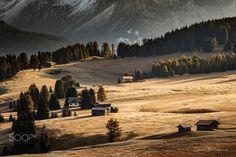 "Sunrise on the meadows - Sunrise bellow Sassolungo in Dolomites last autumn  Follow me on <a href=""https://www.facebook.com/lubosbalazovic.sk"">FACEBOOK</a> or <a href=""https://www.instagram.com/balazovic.lubos"">INSTAGRAM</a>"