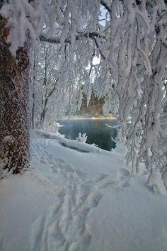 "thelordismylightandmysalvation: "" chasingrainbowsforever: "" Winter Water Wonderland "" """