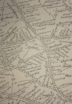 Traveller Wallpaper Large design wallpaper with map design in coffee on taupe.