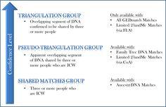 Autosomal DNA Matching Confidence Spectrum