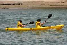 The Velddrif Sewing Shack by Christine Cooke : Berg River Canoe Challenge Canoe, West Coast, Surfboard, Challenges, River, Sewing, Sports, Hs Sports, Couture