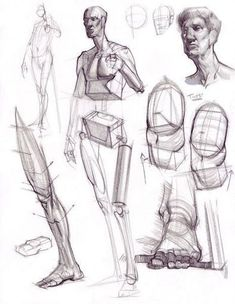 Enjoy a collection of references for Character Design: Legs Anatomy. The collection contains illustrations, sketches, model sheets and tutorials… This Human Anatomy Drawing, Gesture Drawing, Body Drawing, Life Drawing, Daily Drawing, Drawing Art, Drawing Tips, Figure Drawing Reference, Anatomy Reference