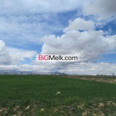 10هکتار زمین کشاورزی سند 6 دانگ اکازیون
