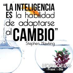 """""""La inteligencia es la habilidad de adaptarse al cambio"""" Stephen Hawking #Frases #FrasesDelDia"""
