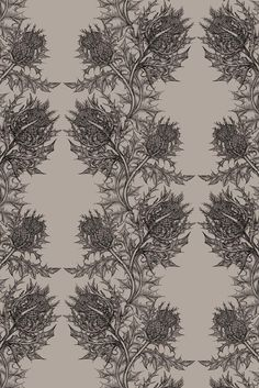Timorous Beasties thistle wallpaper. It's £75 a roll, but sometime, somewhere I going to have some!