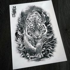 Tiger Tattoo Back, Tiger Tattoo Sleeve, Tiger Tattoo Design, Tattoo Designs, Sketch Tattoo Design, Cat Tattoo, Tattoo Sketches, Tattoo Ink, Unique Tattoos