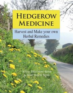 Hedgerow Medicine: Harvest and Make Your Own Herbal Remedies a great book from Julie Bruton-Seal, Matthew Seal.  http://www.amazon.co.uk/gp/product/1873674996?ie=UTF8&camp=3194&creative=21330&creativeASIN=1873674996&linkCode=shr&tag=wwwjorhodesho-21&qid=1380977193&sr=8-1&keywords=hedgerow+medicine