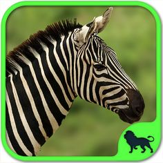 Animals Puzzle: Zoo by sparse creations & @sparsekids http://www.thepopularapps.com/apps/animals-puzzle-zoo-free