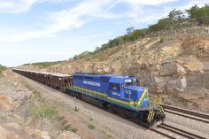 A #ferrovia irá transportar até 30 milhões de toneladas por ano, com destaque para #MinérioDeFerro e #soja.