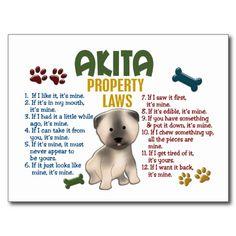 Wetten 4 van het Bezit van Akita Wenskaart