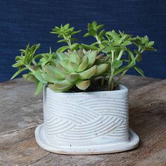 Petite Pottery Planter-Handmade in Matthews by Addison Pottery, this is a truly functional planter with a drainage hole to prevent over-watering. Just add a few succulent plants, and you have a bright and cheery gift ready to go for a friend, hostess or coworker.
