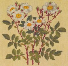 ru / Фото - Flowers and Berries in Cross Stitch - Mosca Cross Stitch Charts, Cross Stitch Designs, Cross Stitch Patterns, Rose Embroidery, Cross Stitch Embroidery, Embroidery Designs, Needlepoint Stitches, Needlework, Ribbon Work