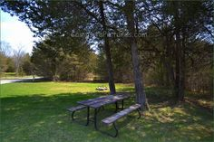 Ferris Provincial Park, Camping in Ontario Parks Ontario Parks, Campsite, Outdoor Furniture, Outdoor Decor, Picture Video, Adventure, Plants, Pictures, Garden Furniture Outlet