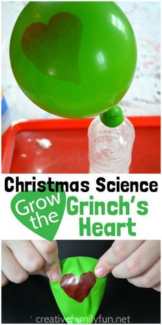 Grow the Grinch's Heart Science Experiment – Creative Family Fun Grow the Grinch's heart with this fun Christmas science activity based on this favorite book. It's a STEM activity with a Christmas twist. The Grinch, Grinch Stole Christmas, Christmas Fun, Outdoor Christmas, Christmas Cookies, Whoville Christmas, Woodland Christmas, Christmas Wishes, Science Projects For Kids